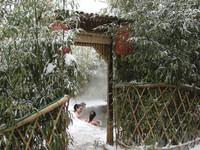 2010竹林 (11).jpg